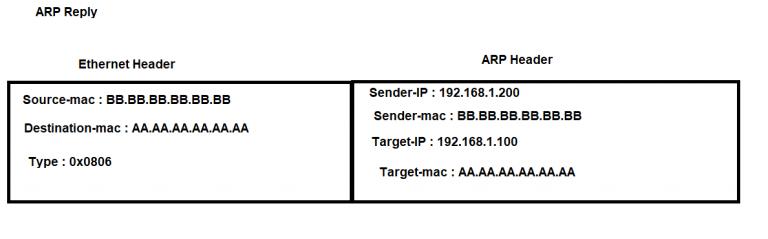 ARP Table